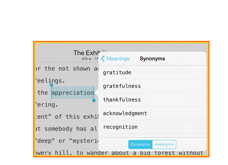 WriteRight, writing app with synonyms, antonyms and phraseology